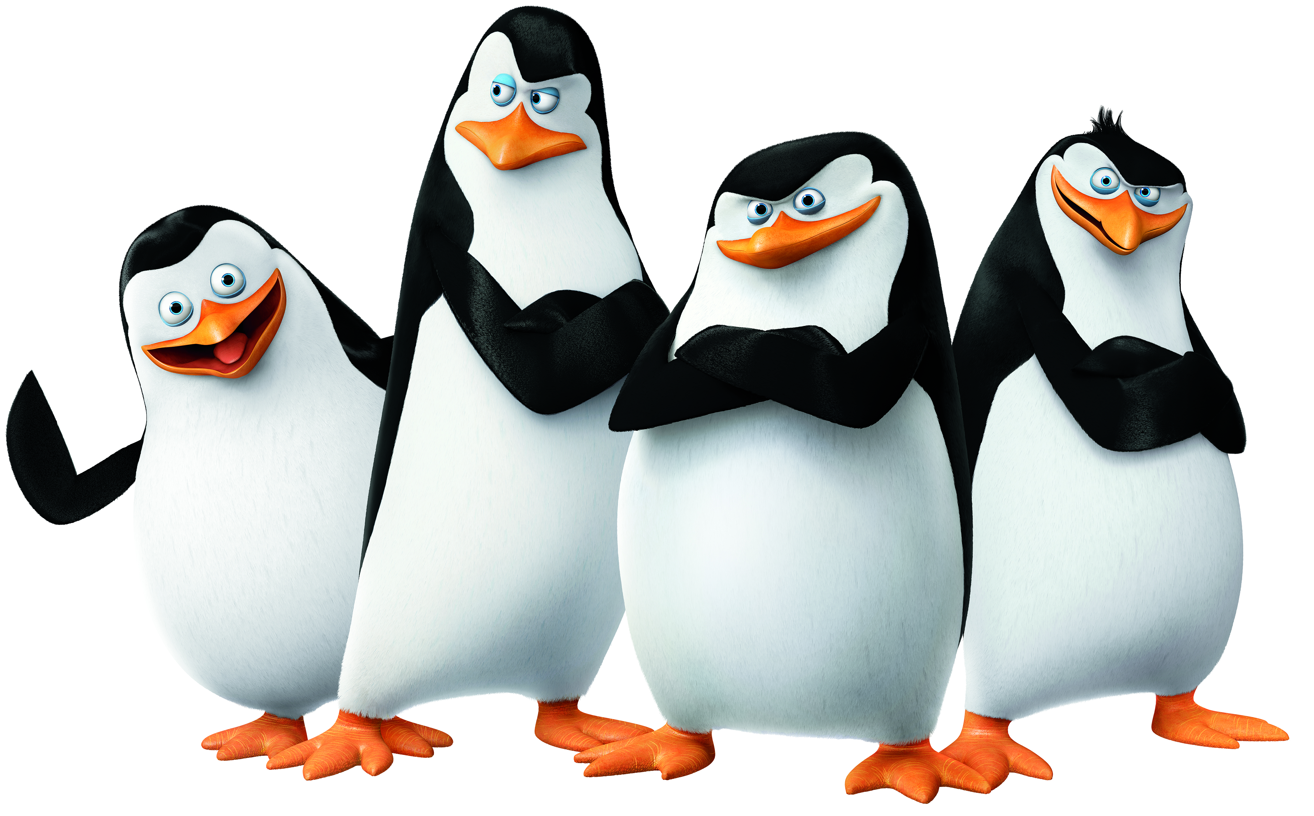 peng cg penguins 14